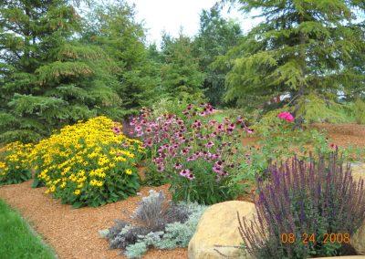 adams garden 7